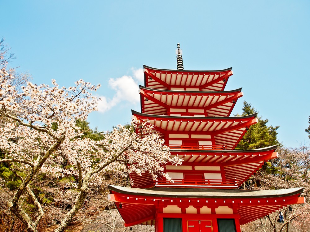 Sakura trees and century-old temples are just some of the reasons to visit Japan. Photo by nui7711 / ShutterStock