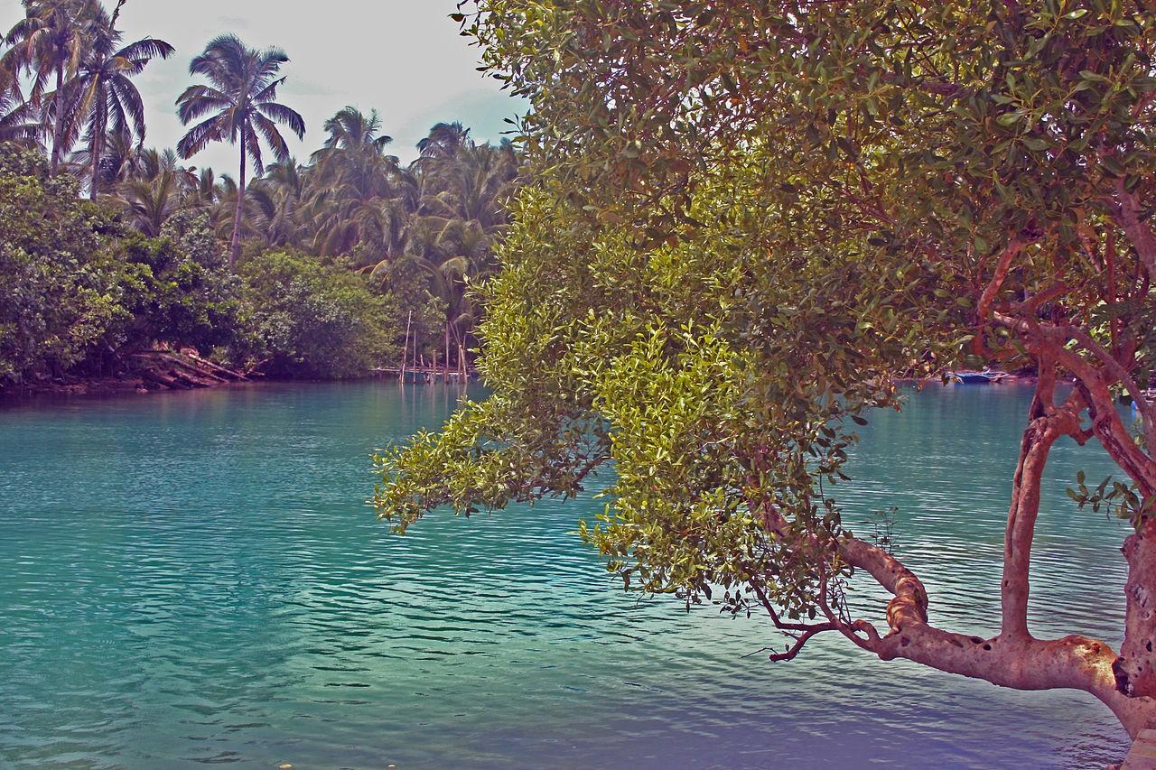 Small Lagoon on Tubabao Island, Guiuan, Eastern Samar. Angelo Juan ramos / Wikipedia photo