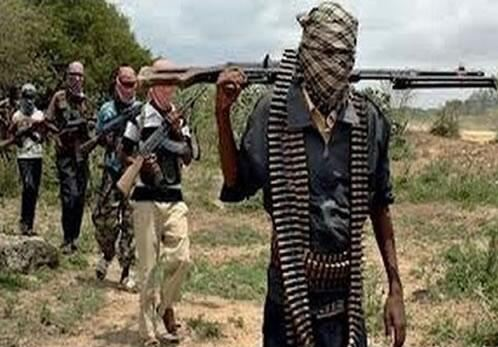 Boko Haram. Twitter file photo