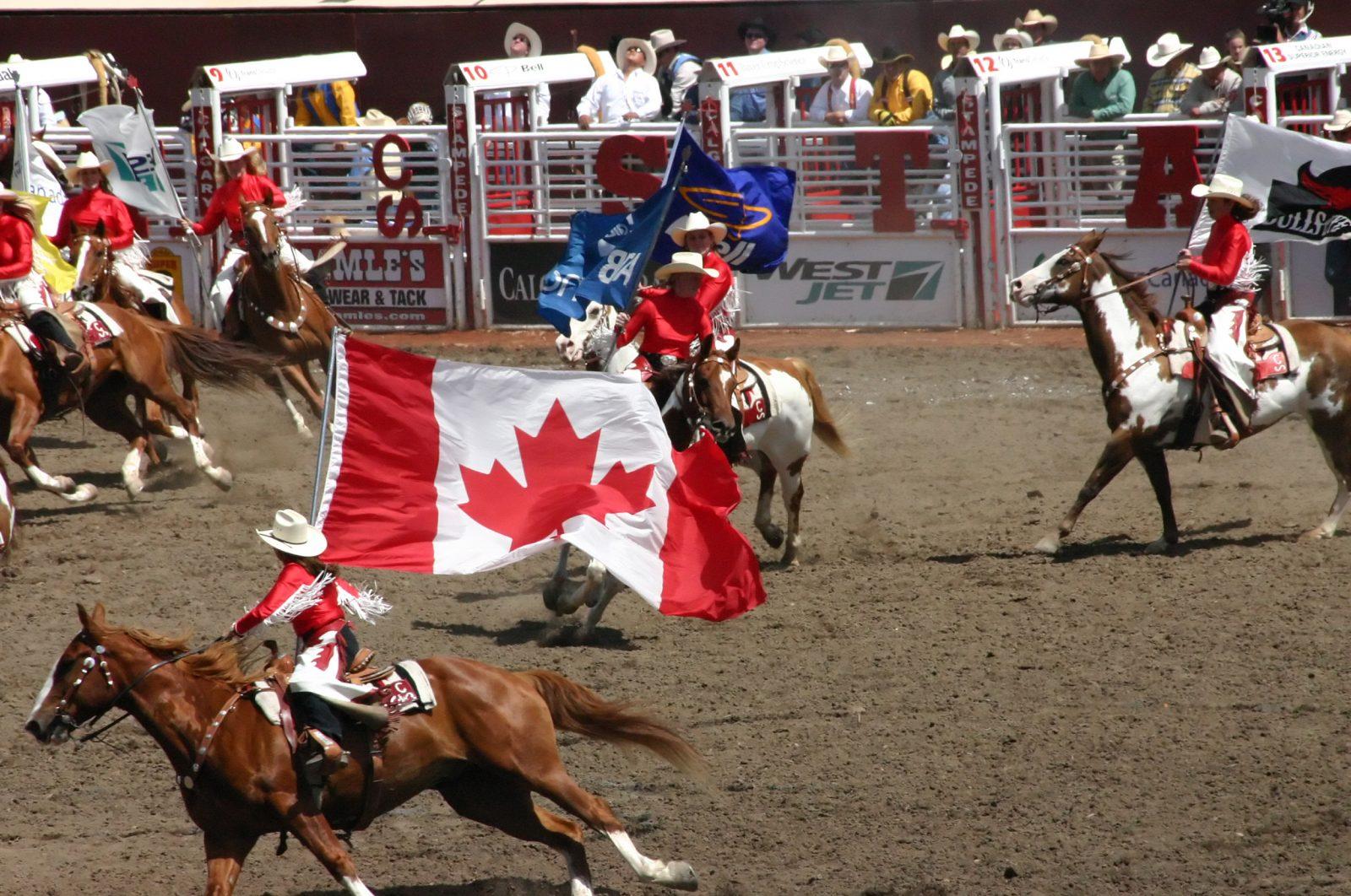 Calgary Stampede. Steve Estvanik / ShutterStock