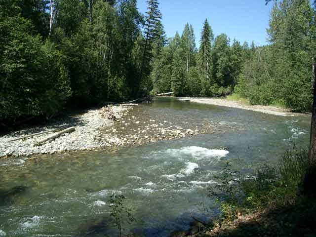 Shuswap River. Photo from ourbc.com.
