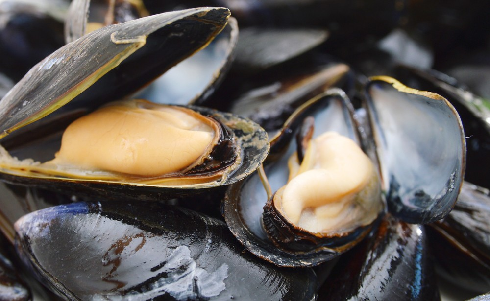 Be careful when eating shellfish from Bataan. ShutterStock image