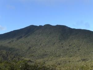 Mt. Hamiguitan's peak / Wikipedia Photo