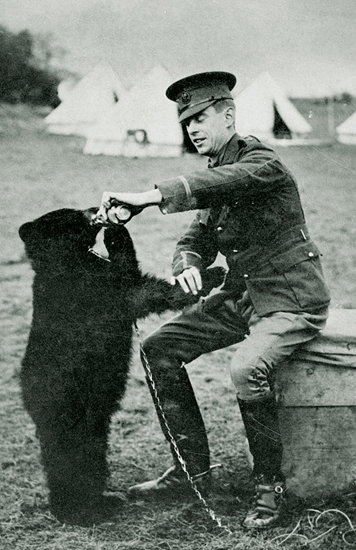 2.The inspiration for the classic children's literature character, Winnie the Pooh.  Winnipeg, the Canadian black bear with original owner, Lt. Harry Colebourne in 1914. (Wikipedia photo)