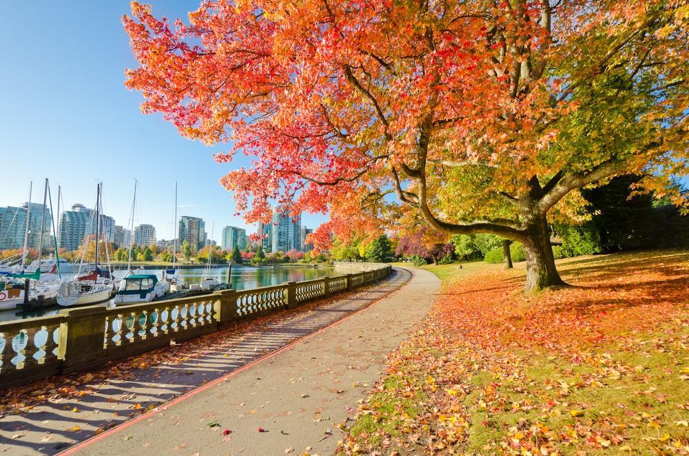 Vancouver (Romakoma / ShutterStock)