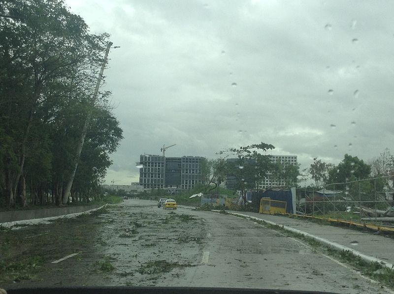 Aftermath of Glenda_in Jose W. Diokno Blvd / Wikipedia Photo