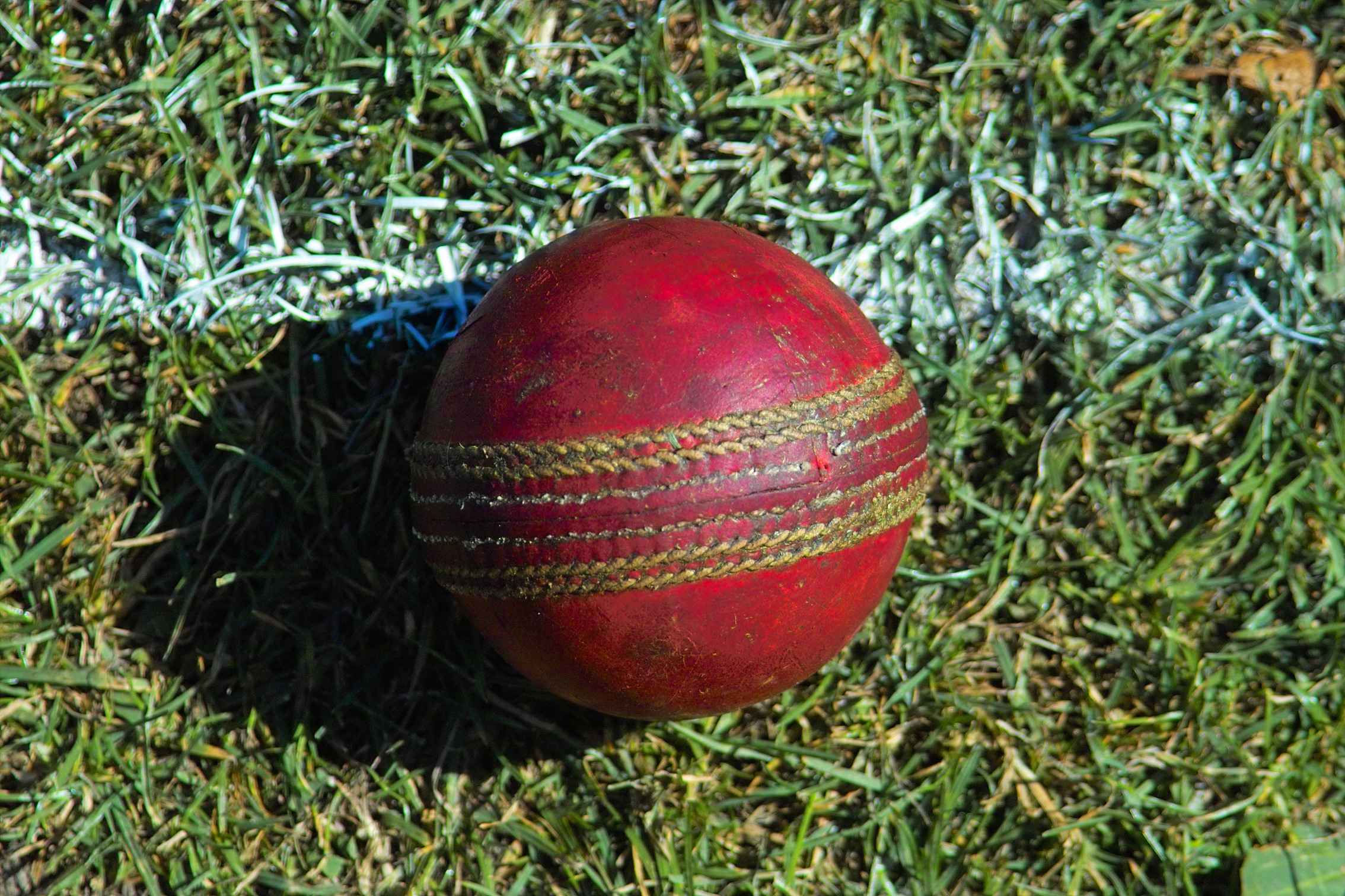 Used_cricket_ball
