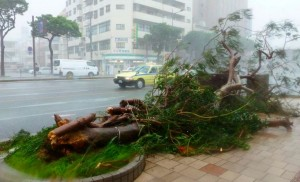 One killed and more than 500,000 people urged to evacuate as Typhoon Neoguri hits Japan (Reuters photo via Twitter)