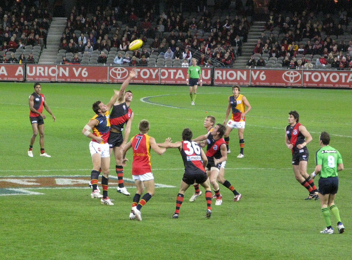 An AFL match between Essedon and Adelaide Football Clubs. Photo by Mark Ehr / Australian Rules Football / Wikimedia Commons.