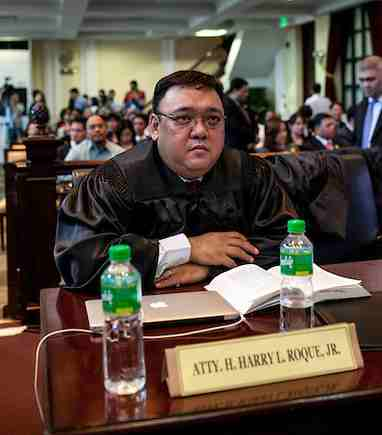 Human rights lawyer Atty. Harry Roque (www.harryroque.com)