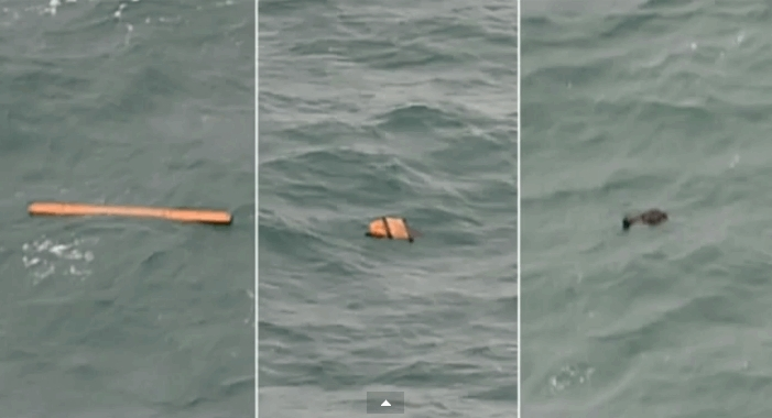 A human body has been found in the search zone of the missing AirAsia flight, Indonesian Air Forces have stated, according to media reports. Objects resembling parts of plane were seen in the same area. Screenshot from YouTube.