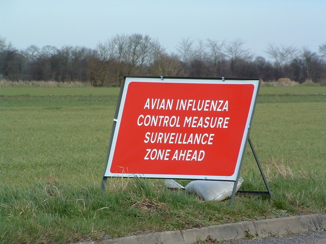Close up of an avian influenza (bird flu) sign on a minor road between Swan Green and Cratfield Suffolk. This is the entrance to the 10 kilometre surveillance zone. Keith Evans / geograph.org.uk.
