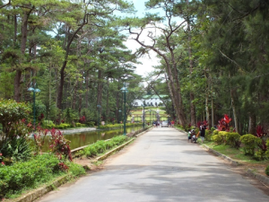 A park in Baguio taken from Discoverbaguio.com.