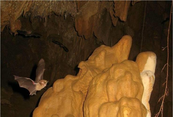 Banggalau Cave, Sta. Teresita, Cagayan (www.cagayanvalley.com)