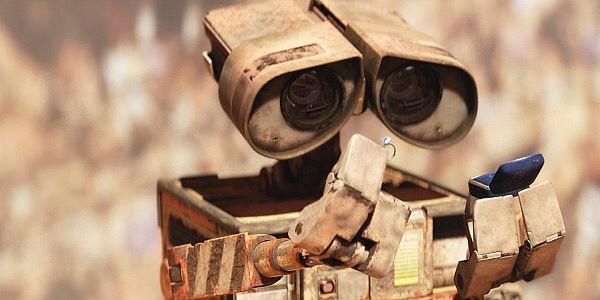 Wall-E (Facebook photo)