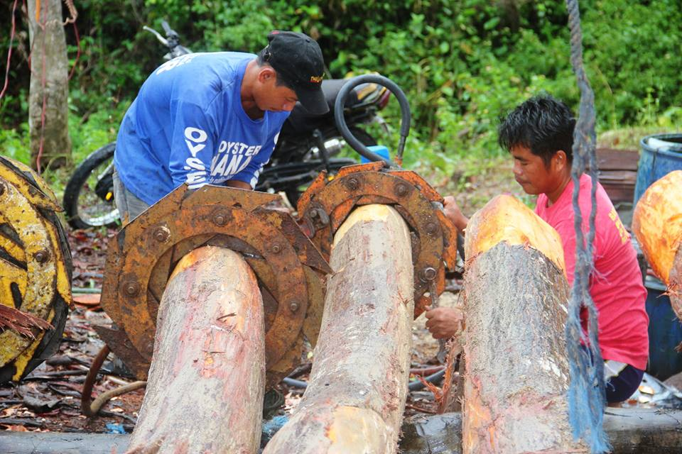Department of Science and Technology (DOST) plays a key role in the Ilocos Norte's rural electrification program which is a forestry technology called high pressure sap displacement that is used in treating electric poles on-site. (Facebook photo)