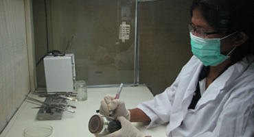 A laboratory technician develops coconut tissue culture through somatic embryogenesis. This is an alternative technique for mass propagation of coconut (Photo from the Crops Research Division of PCAARRD)
