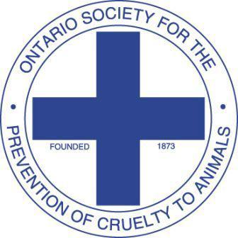 Ontario's animal welfare watchdog says a woman from Huron County has pleaded guilty to animal cruelty after an investigation involving 60 animals on her property. (Photo: Ontario SPCA/Facebook)