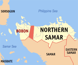 A New People's Army (NPA) female fighter was killed while an improvised explosive device (IED) was recovered along with three cellular phones following a clash with 43rd Infantry Battalion troopers in Bobon, Northern Samar on Tuesday. (Photo by Mike Gonzalez (TheCoffee) - English Wikipedia, CC BY-SA 3.0,)