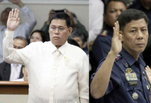 Purisima and Napenas now facing criminal charges (photo: Senate PRIB, File)