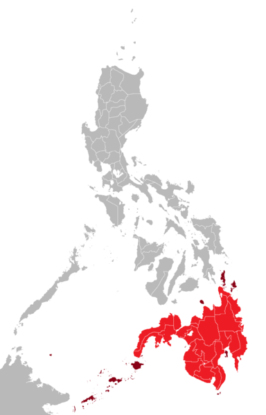Military units in Lanao Del Sur, Lanao Del Norte and Zamboanga were ordered to secure all vital installations and establishments in the above-mentioned provinces to forestall possible retaliatory and diversionary attacks by remnants of the Maute Group. (Photo: JL 09/ Wikipedia)