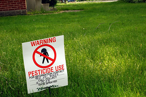 Quigley said the current ban addressed health concerns from spraying cosmetic pesticides on lawns. (Photo:Peter Organisciak/ Flcikr)