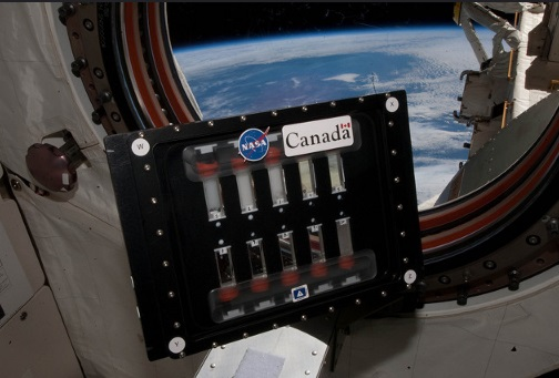 Retired Canadian astronauts say the gruelling selection process for choosing the country's new space explorers is one that is continuously evolving. (Photo: Simon Fraser University - University Communications /Flickr)