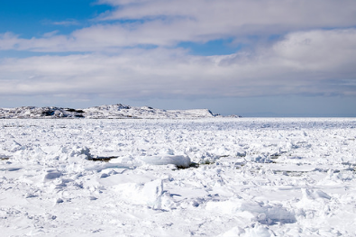 From extreme pack ice to record-breaking snow falls, it's the winter that just won't let go across much of Newfoundland. (Photo; Paul Asman and Jill Lenoble/Flickr)