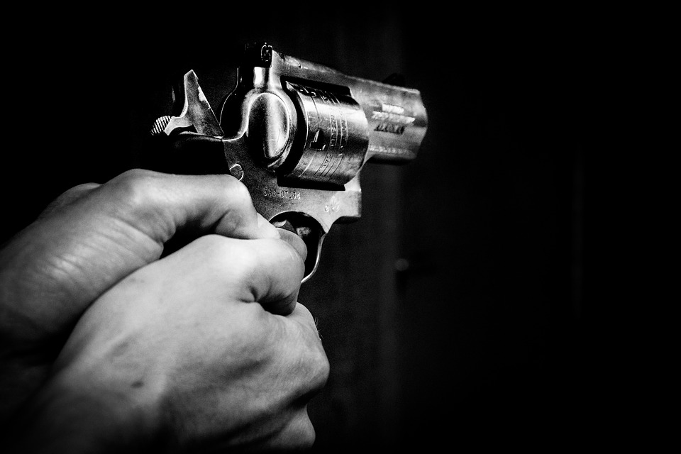 Authorities did not announce his name at a news conference on the shooting, saying only that the suspect was a white male in his 20s. (PIXABAY PHOTO)