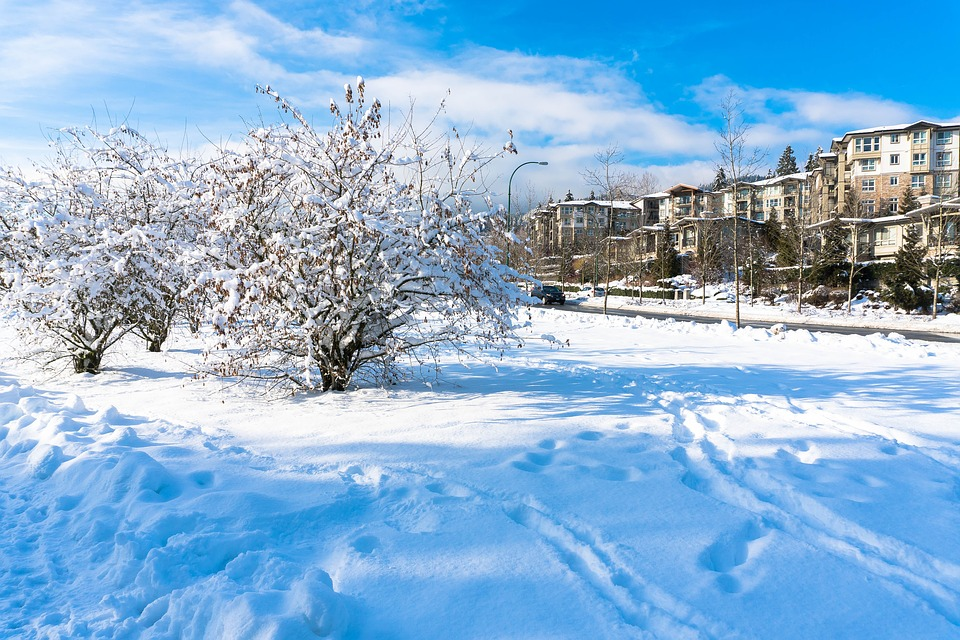 White Christmas In Canada.White Christmas Uncertain In Parts Of Canada But Cold Snap A