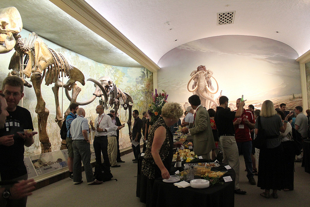 The University of Nebraska State Museum's Science Cafe is moving to a new location in Lincoln for its series of free events. (Photo by Quinn Dombrowski/Flickr, CC BY-SA 2.0)