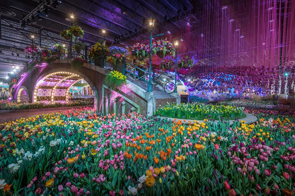 As the East Coast continues its slog through chilly temperatures and general winter dreariness, the Philadelphia Flower Show offers a colorful sneak peek into warmer, longer days. (Photo: The Philadelphia Flower Show/Facebook)