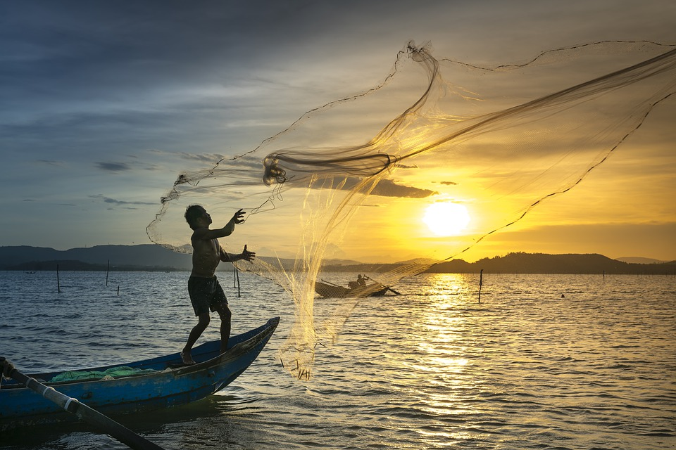 Pauly said such decline is from relentlessly increasing pressure on the world's fish stocks, as fishing activities continue to expand globally. (Pixabay photo)