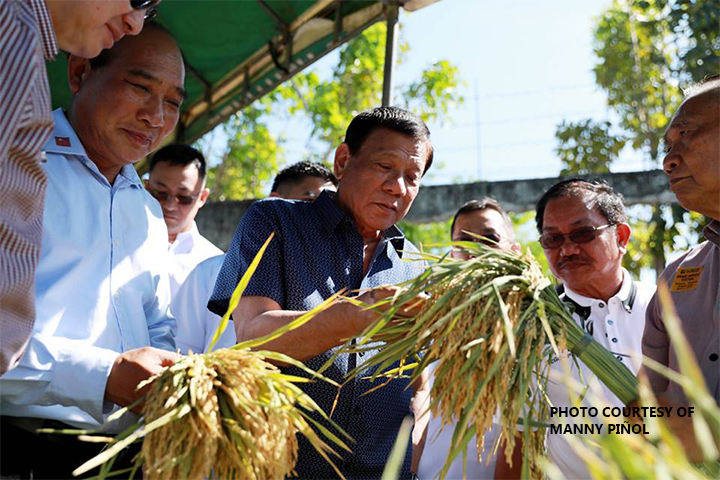 SATELLITE PRODUCTION. Agriculture Secretary Emmanuel Piñol (2nd from right) said Malacañang had approved his travel to Papua New Guinea soon for a bilateral deal allowing Filipinos to grow rice in PNG and supply the staple back here. (PNA File Photo)