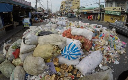 Aside from generating energy, WtE helps reduce the volume of waste for disposal. (PNA photo)