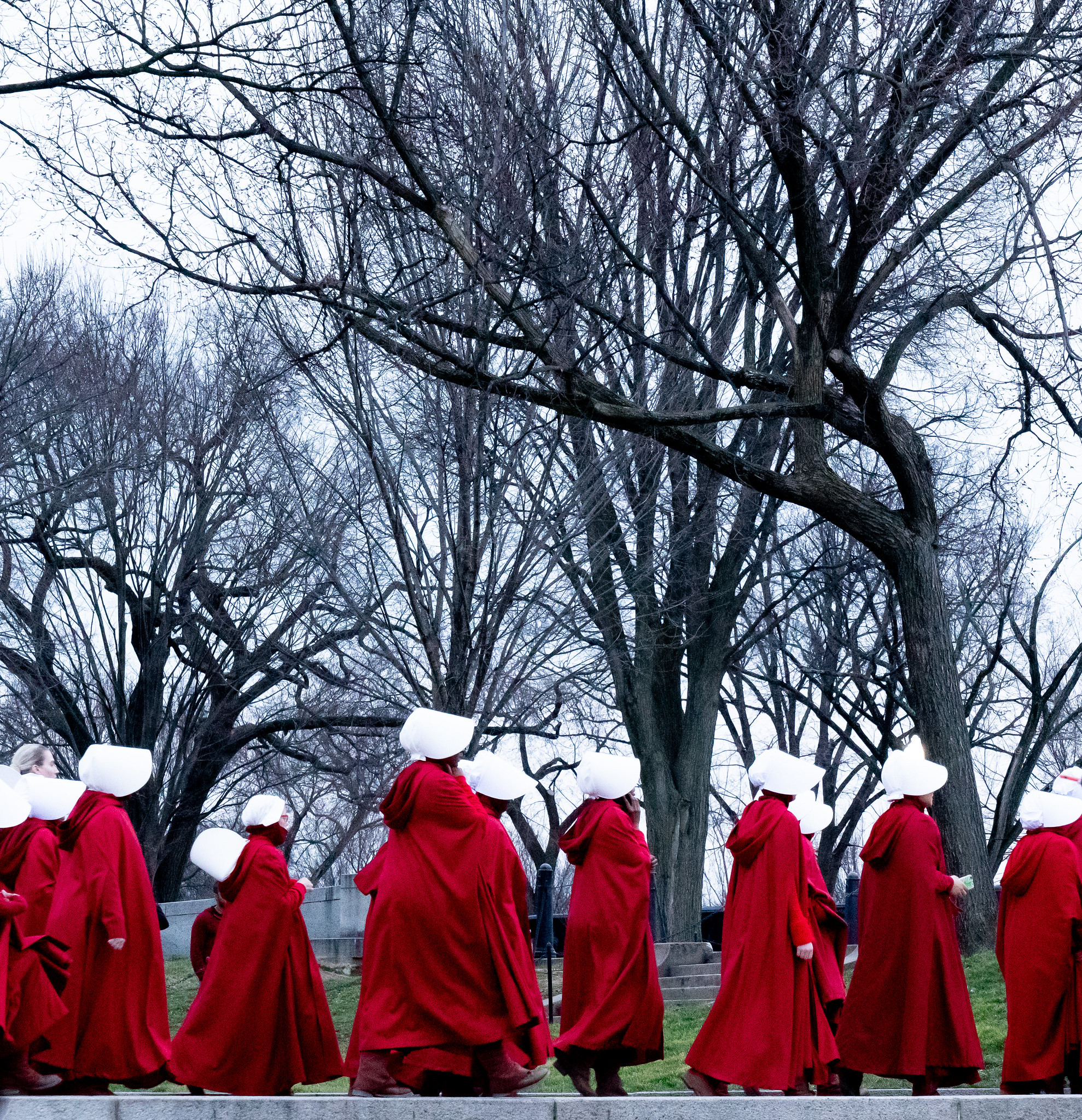 Exalted by readers, TV fans and activists, can 'Handmaid's